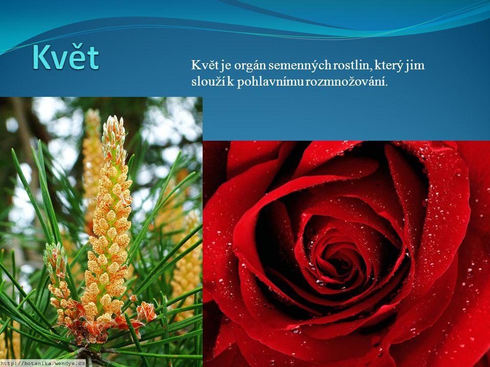 Květ Květ je orgán semenných rostlin, který jim slouží k pohlavnímu rozmnožování.