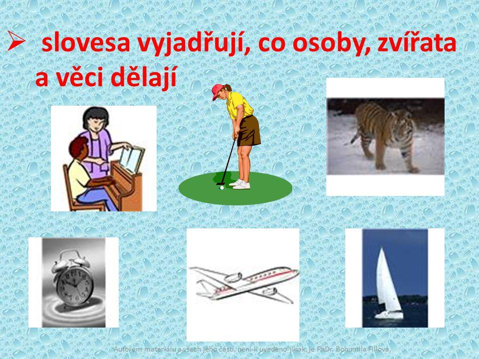 slovesa vyjadřují, co osoby, zvířata a věci dělají