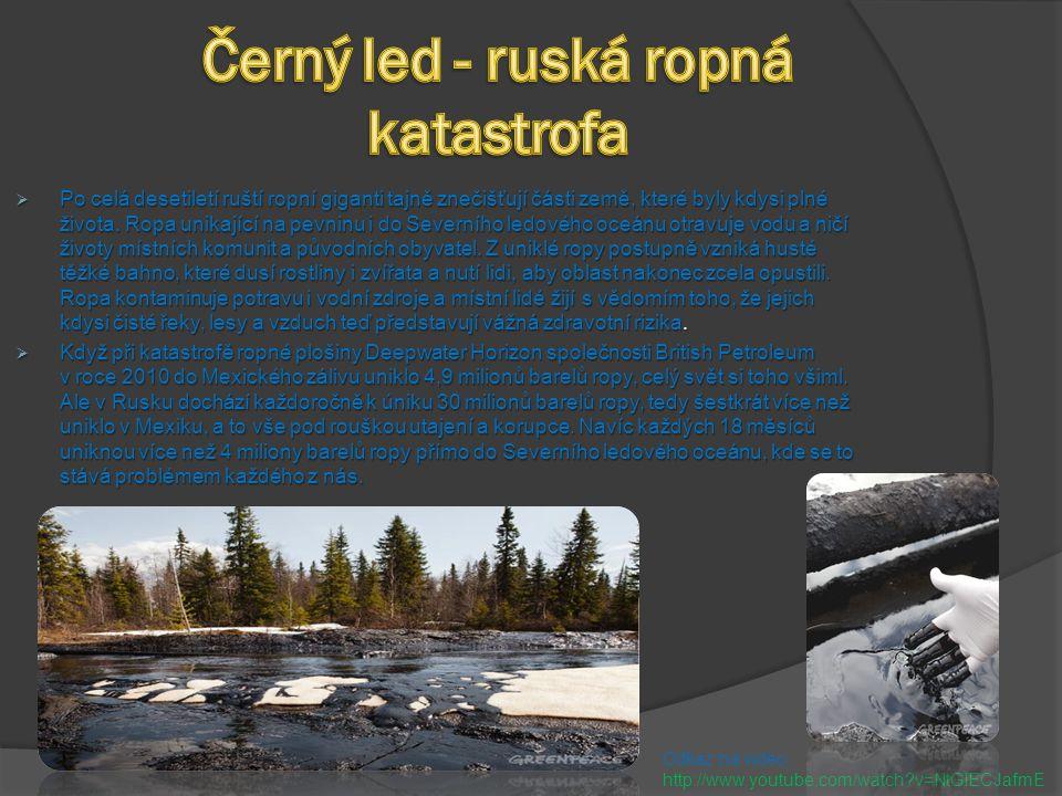 Černý led - ruská ropná katastrofa