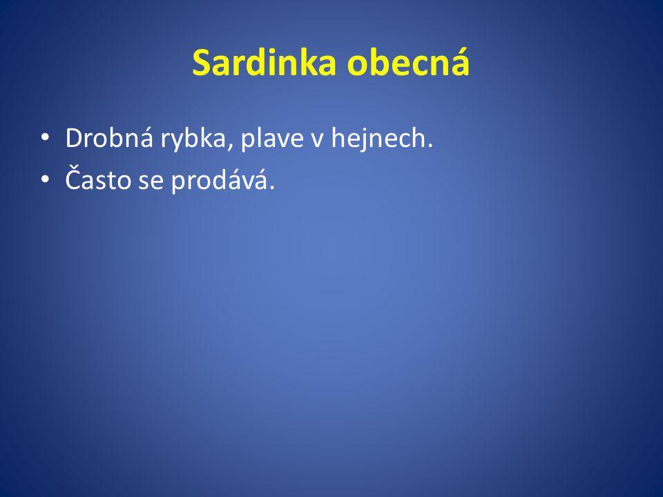 Sardinka obecná Drobná rybka, plave v hejnech. Často se prodává.