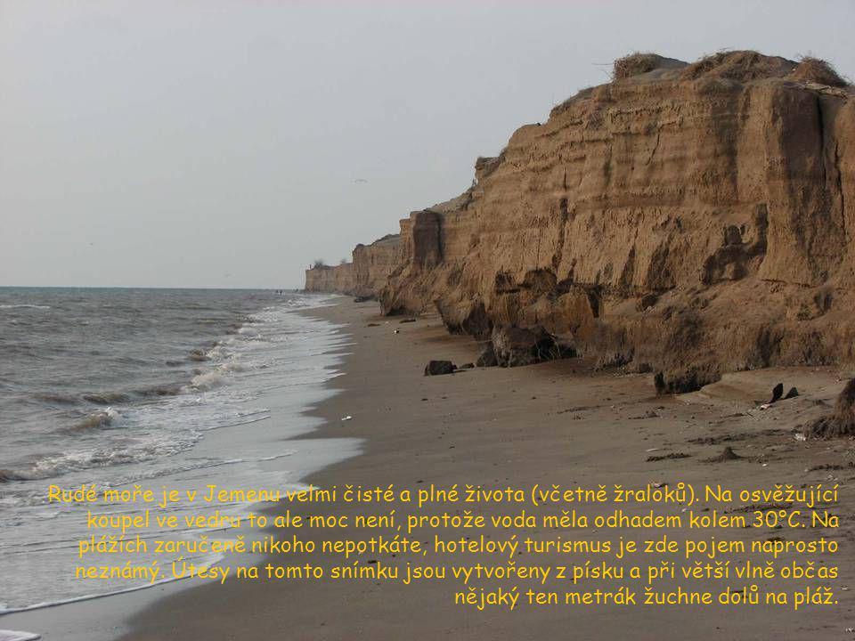 Rudé moře je v Jemenu velmi čisté a plné života (včetně žraloků)