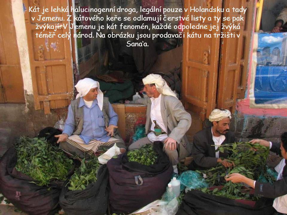 Kát je lehká halucinogenní droga, legální pouze v Holandsku a tady v Jemenu.