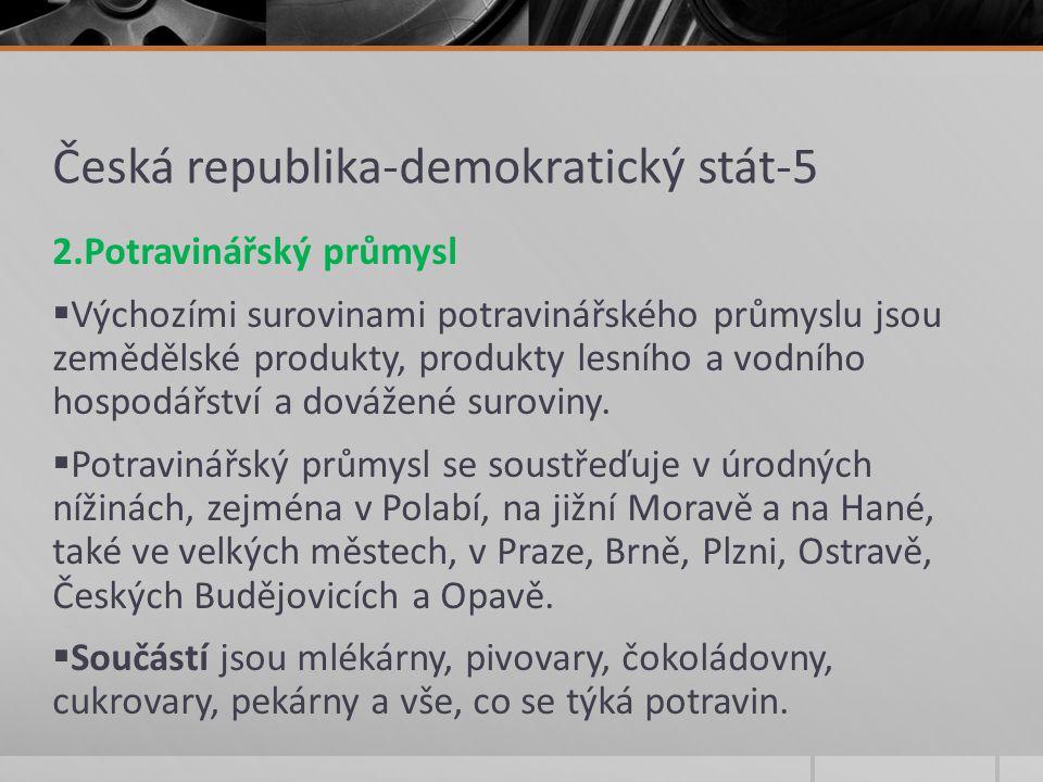Česká republika-demokratický stát-5