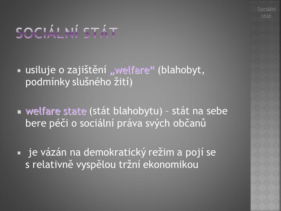 """Sociální stát. Sociální stát. usiluje o zajištění """"welfare (blahobyt, podmínky slušného žití)"""