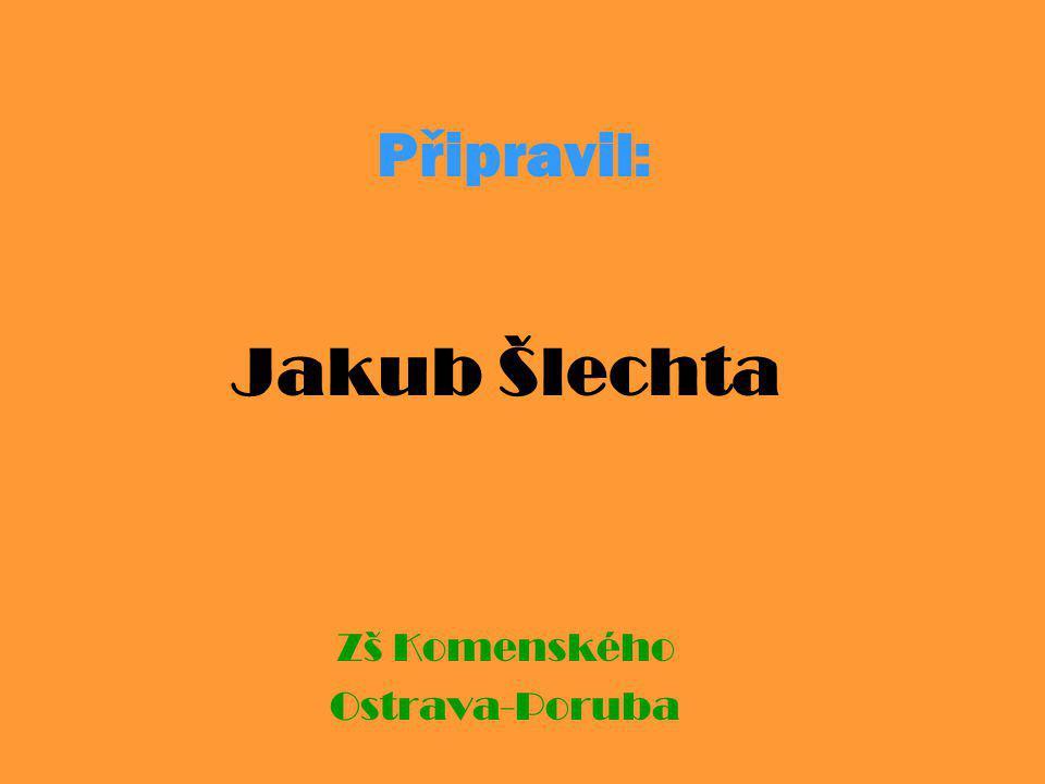 Jakub Šlechta Zš Komenského Ostrava-Poruba