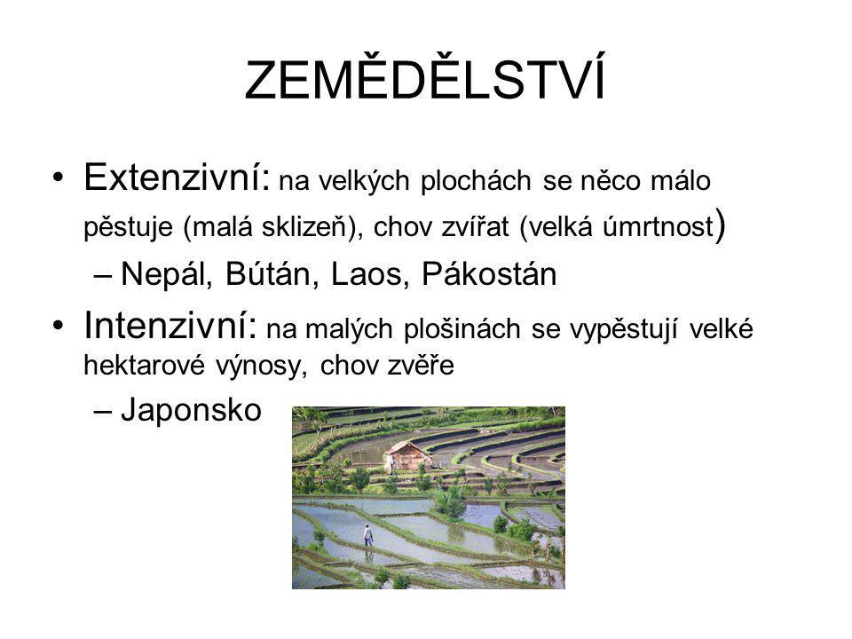 ZEMĚDĚLSTVÍ Extenzivní: na velkých plochách se něco málo pěstuje (malá sklizeň), chov zvířat (velká úmrtnost)
