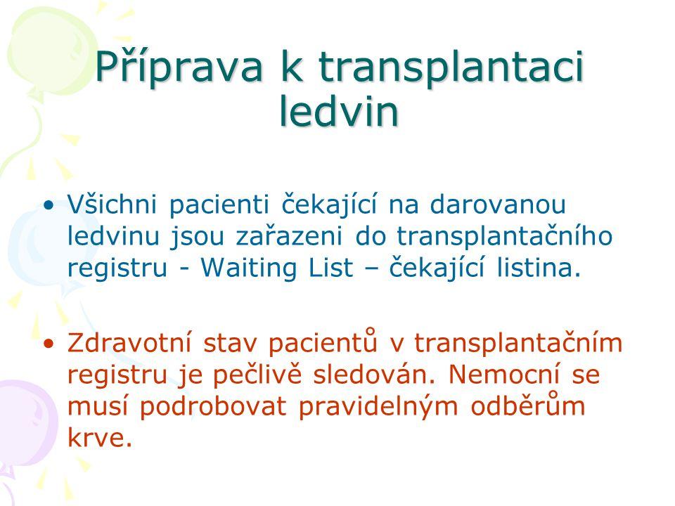 Příprava k transplantaci ledvin