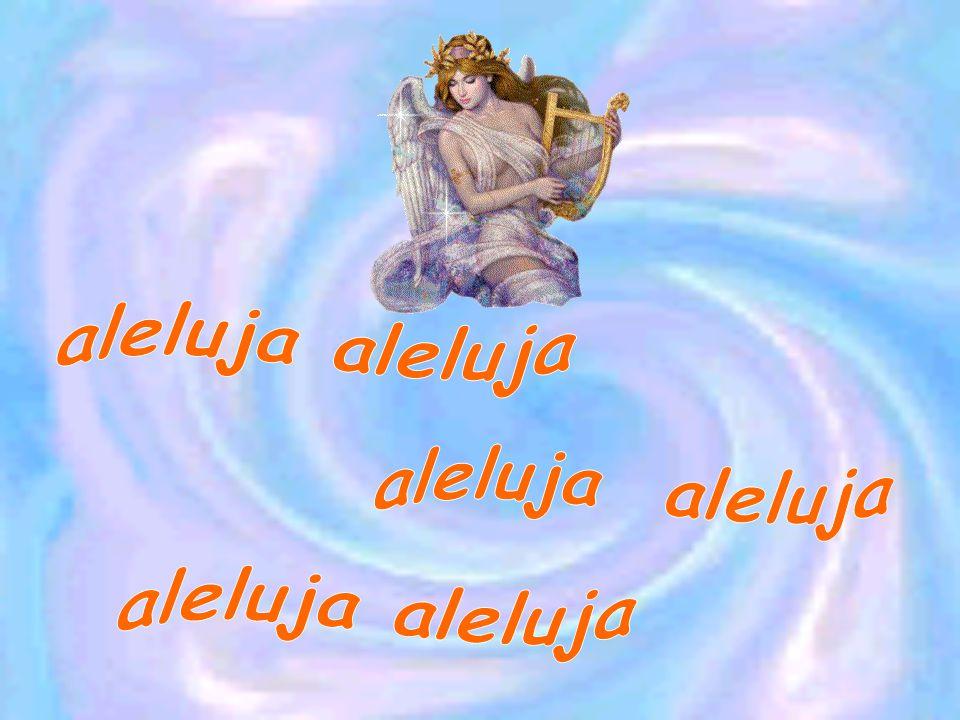 aleluja aleluja aleluja aleluja aleluja aleluja