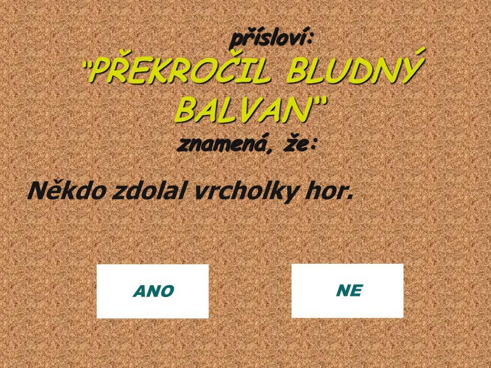přísloví: PŘEKROČIL BLUDNÝ BALVAN znamená, že: