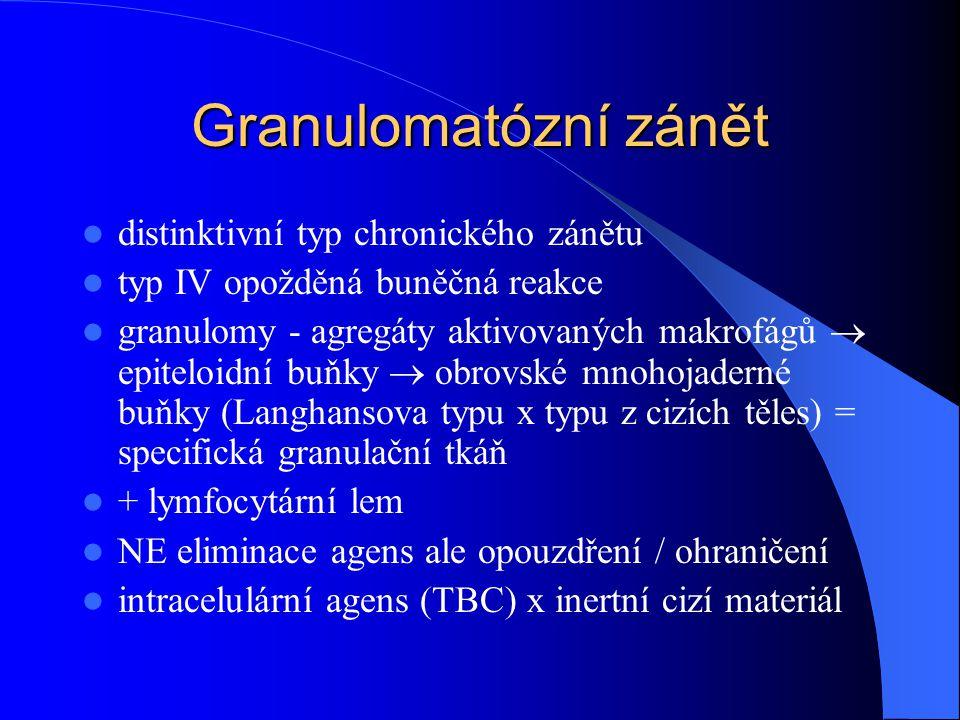 Granulomatózní zánět distinktivní typ chronického zánětu