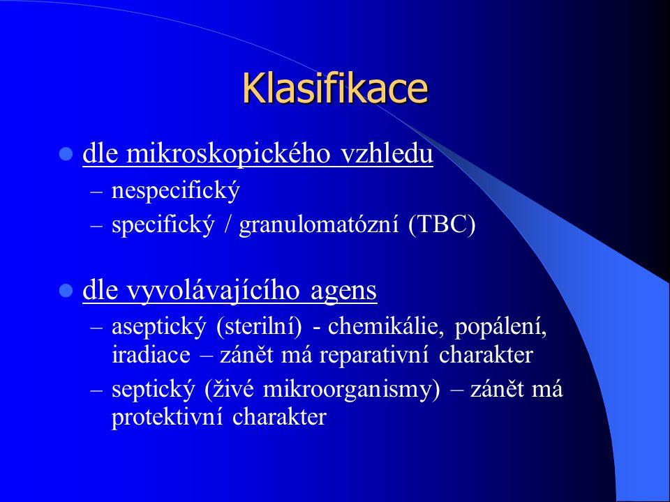 Klasifikace dle mikroskopického vzhledu dle vyvolávajícího agens