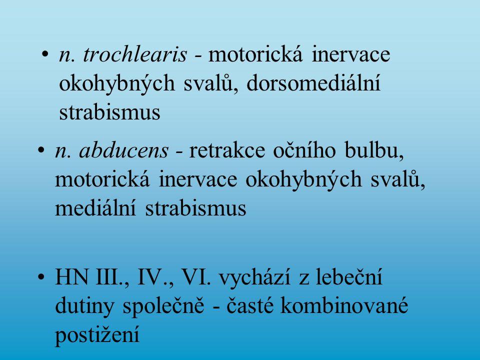 n. trochlearis - motorická inervace okohybných svalů, dorsomediální strabismus