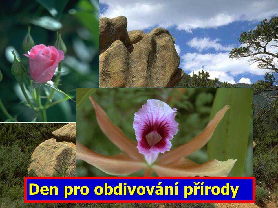 Den pro obdivování přírody