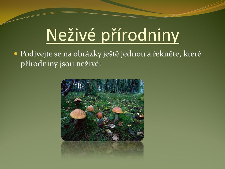 Neživé přírodniny Podívejte se na obrázky ještě jednou a řekněte, které přírodniny jsou neživé: