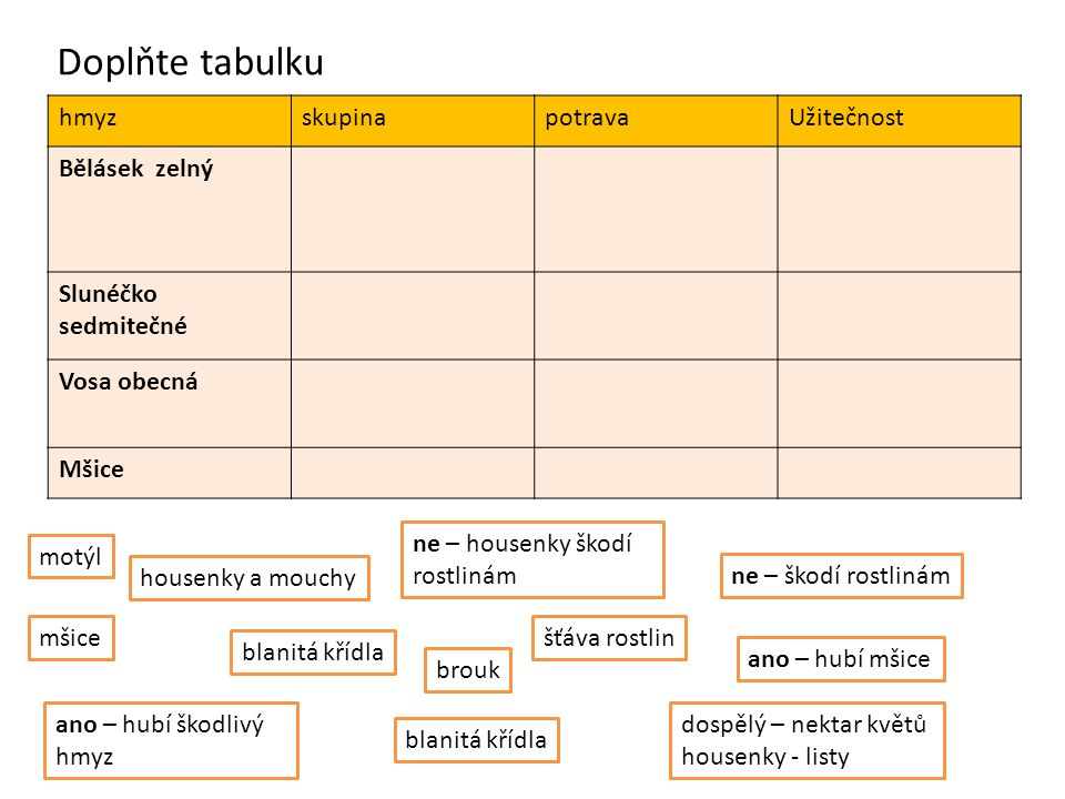 Doplňte tabulku hmyz skupina potrava Užitečnost Bělásek zelný