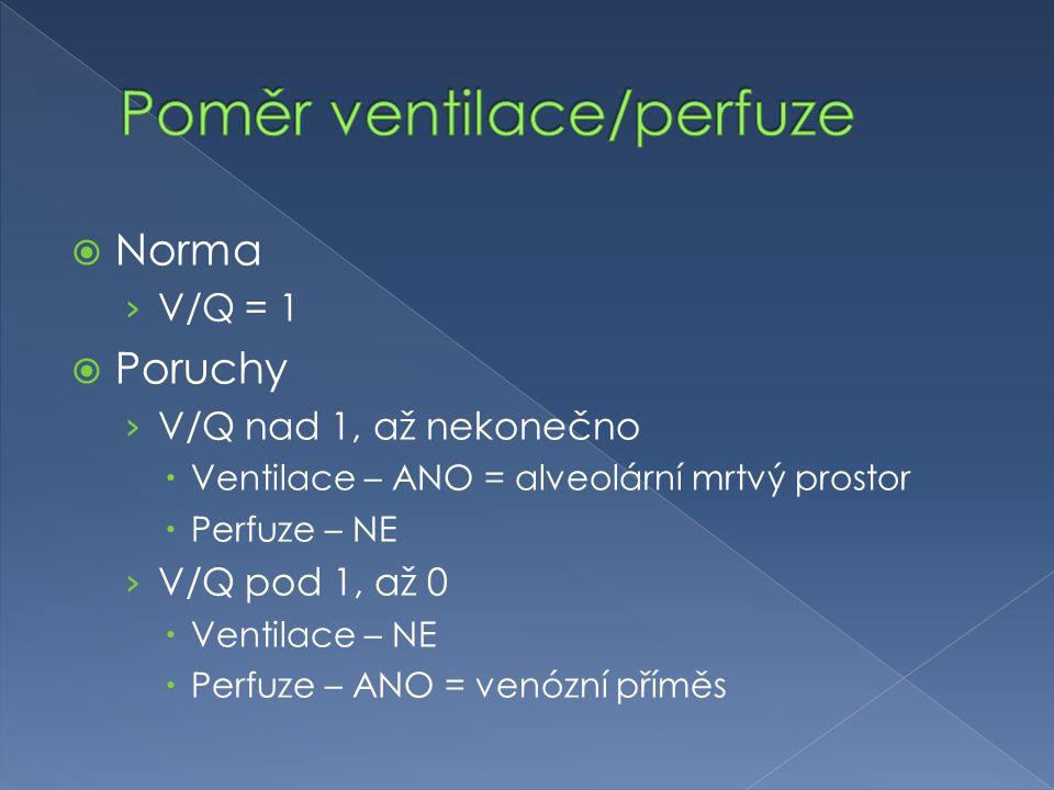 Poměr ventilace/perfuze