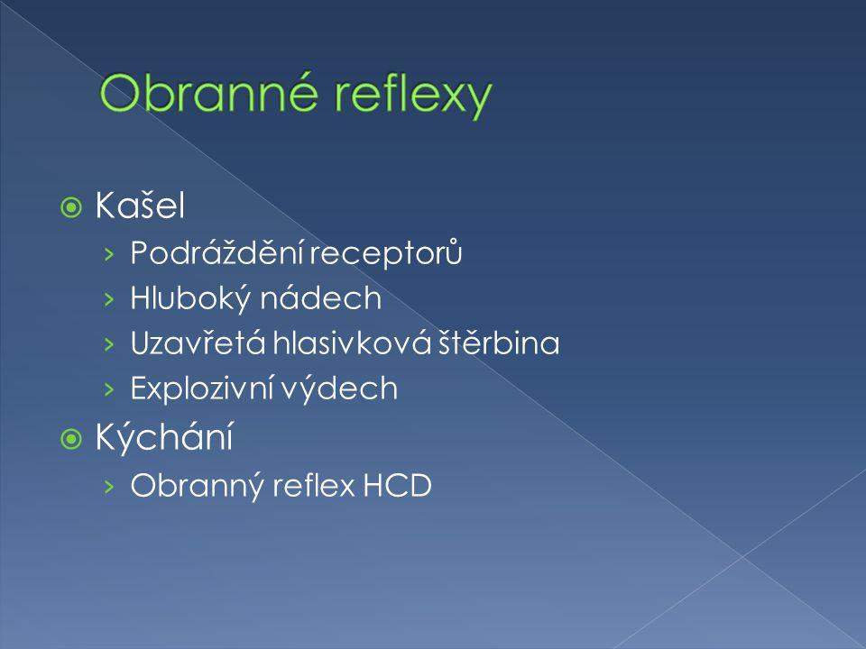 Obranné reflexy Kašel Kýchání Podráždění receptorů Hluboký nádech