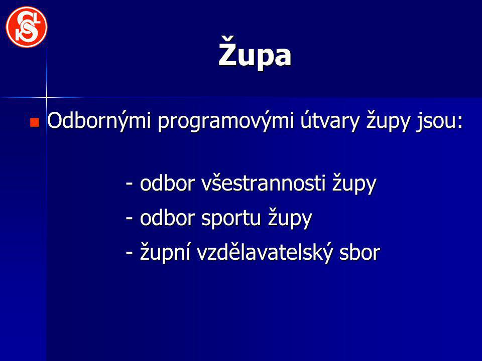 Župa Odbornými programovými útvary župy jsou: