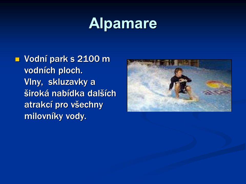 Alpamare Vodní park s 2100 m vodních ploch.
