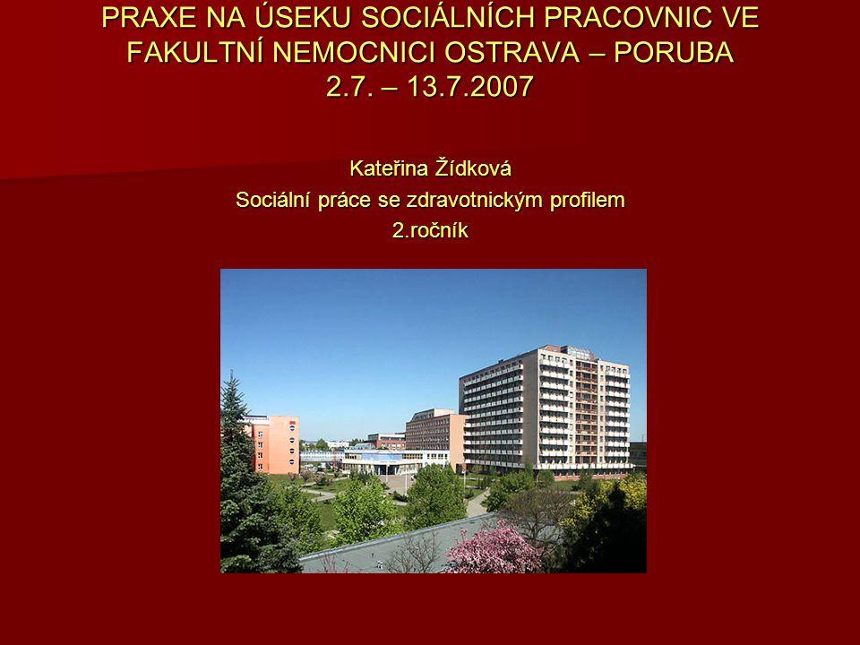 Sociální práce se zdravotnickým profilem