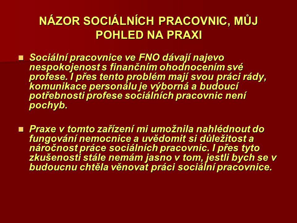 NÁZOR SOCIÁLNÍCH PRACOVNIC, MŮJ POHLED NA PRAXI