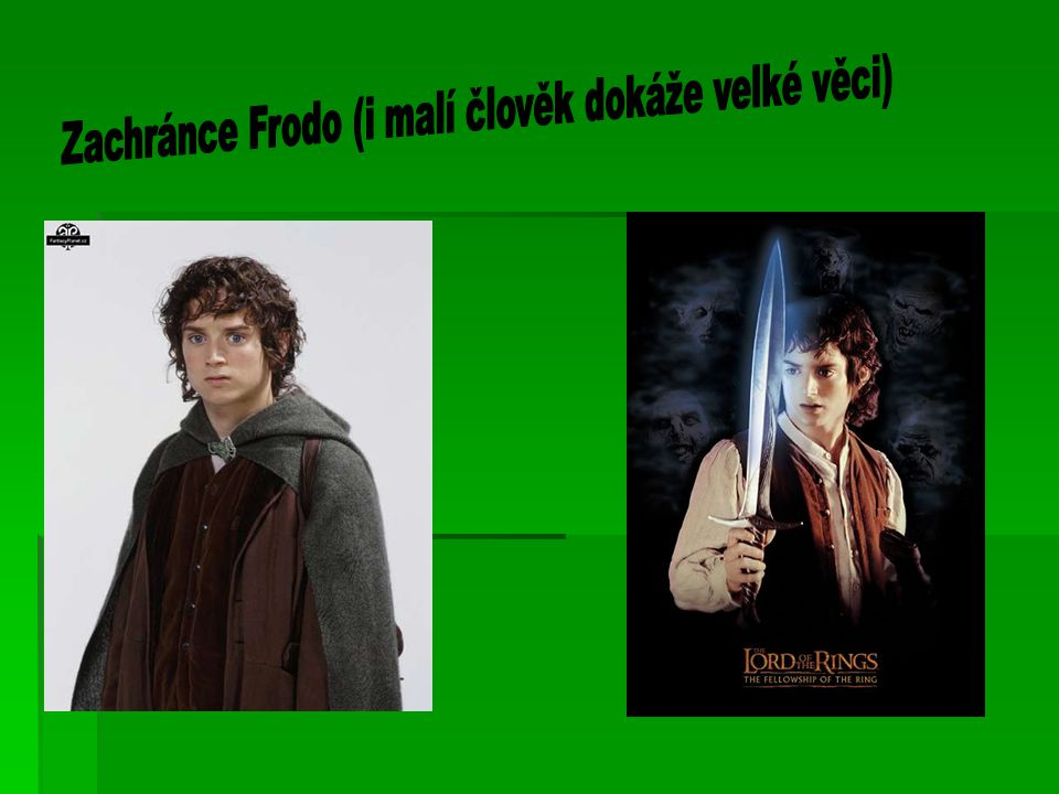 Zachránce Frodo (i malí člověk dokáže velké věci)