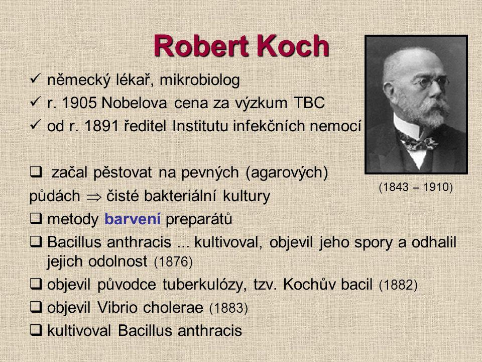 Robert Koch německý lékař, mikrobiolog