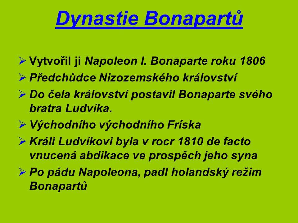 Dynastie Bonapartů Vytvořil ji Napoleon I. Bonaparte roku 1806
