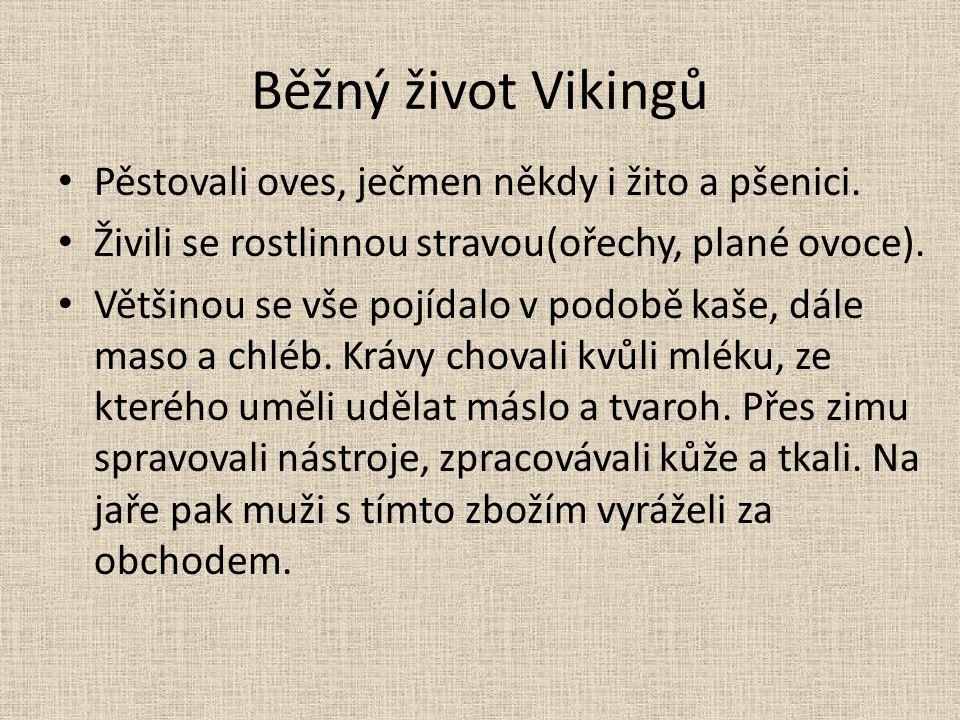 Běžný život Vikingů Pěstovali oves, ječmen někdy i žito a pšenici.