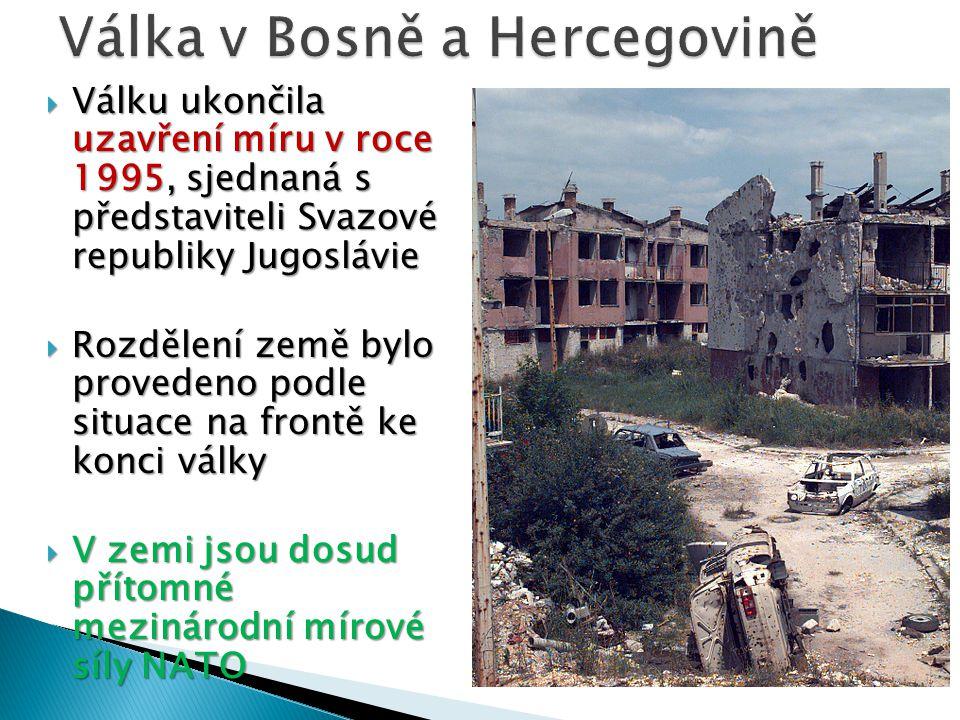 Válka v Bosně a Hercegovině
