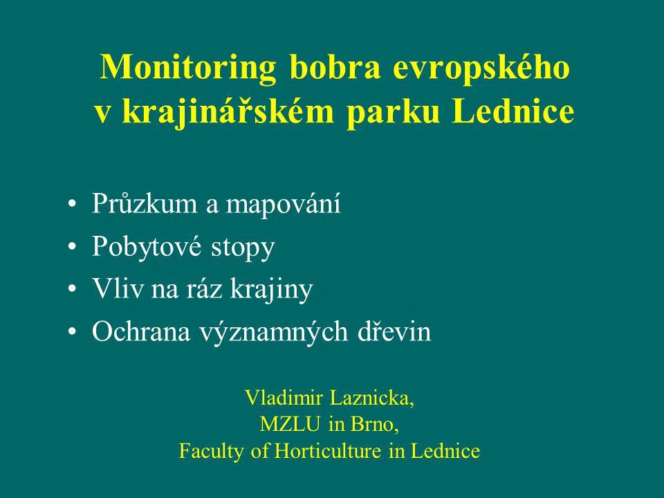 Monitoring bobra evropského v krajinářském parku Lednice