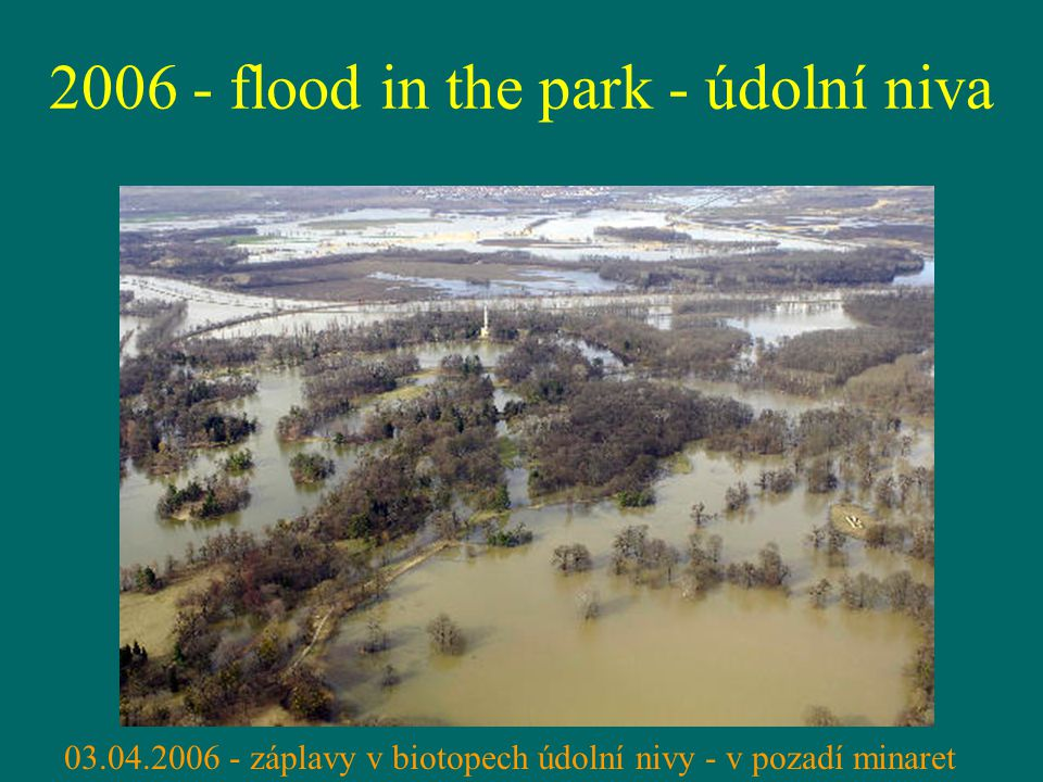 2006 - flood in the park - údolní niva