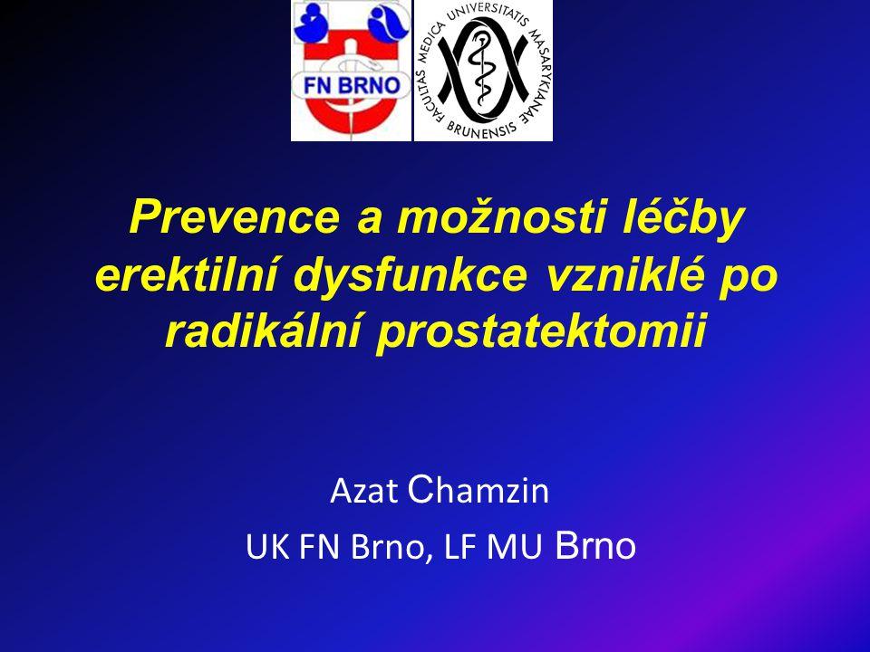 Azat Chamzin UK FN Brno, LF MU Brno