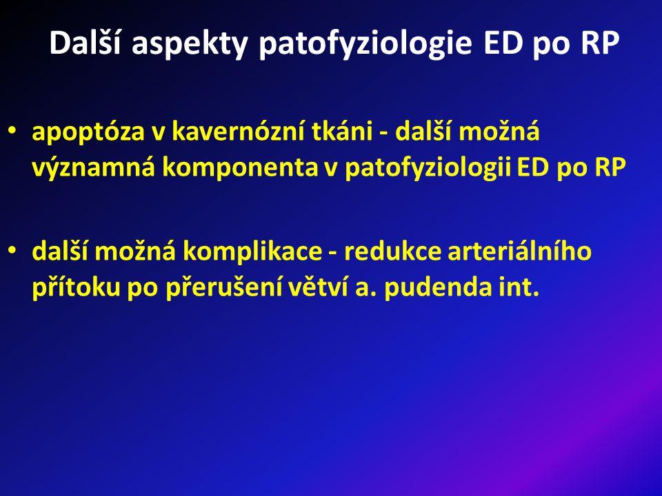 Další aspekty patofyziologie ED po RP