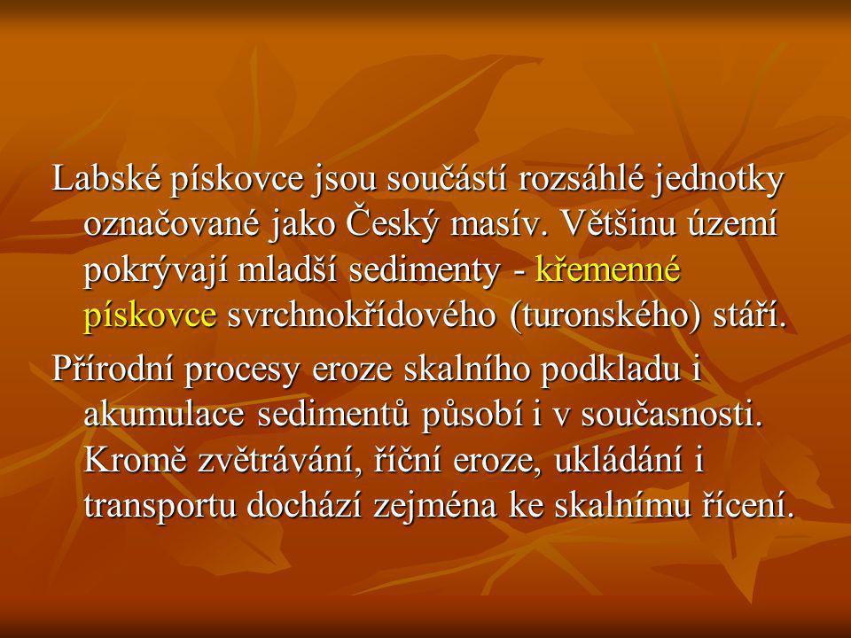 Labské pískovce jsou součástí rozsáhlé jednotky označované jako Český masív. Většinu území pokrývají mladší sedimenty - křemenné pískovce svrchnokřídového (turonského) stáří.