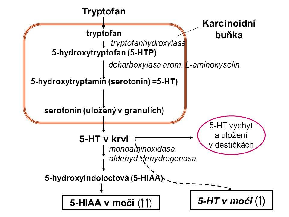 Tryptofan Karcinoidní buňka 5-HT v krvi