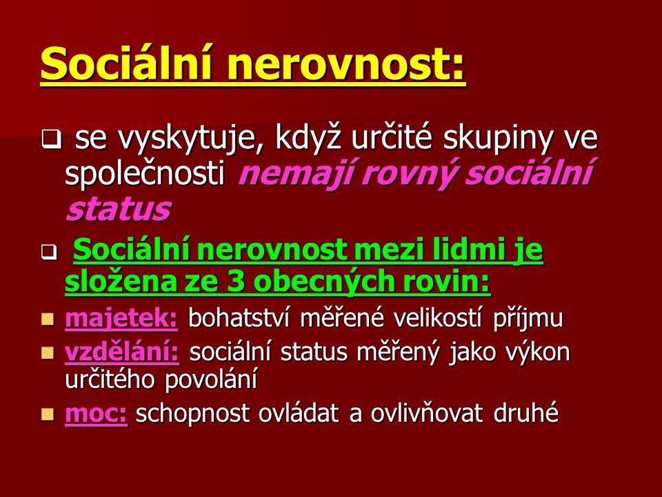 Sociální nerovnost: se vyskytuje, když určité skupiny ve společnosti nemají rovný sociální status.