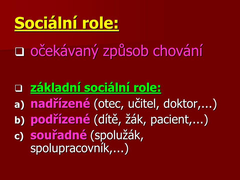 Sociální role: očekávaný způsob chování základní sociální role: