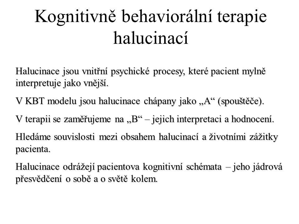 Kognitivně behaviorální terapie halucinací
