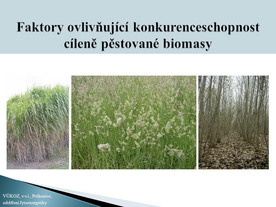 Faktory ovlivňující konkurenceschopnost cíleně pěstované biomasy
