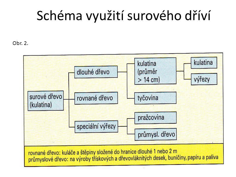 Schéma využití surového dříví