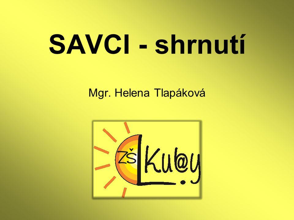 SAVCI - shrnutí Mgr. Helena Tlapáková