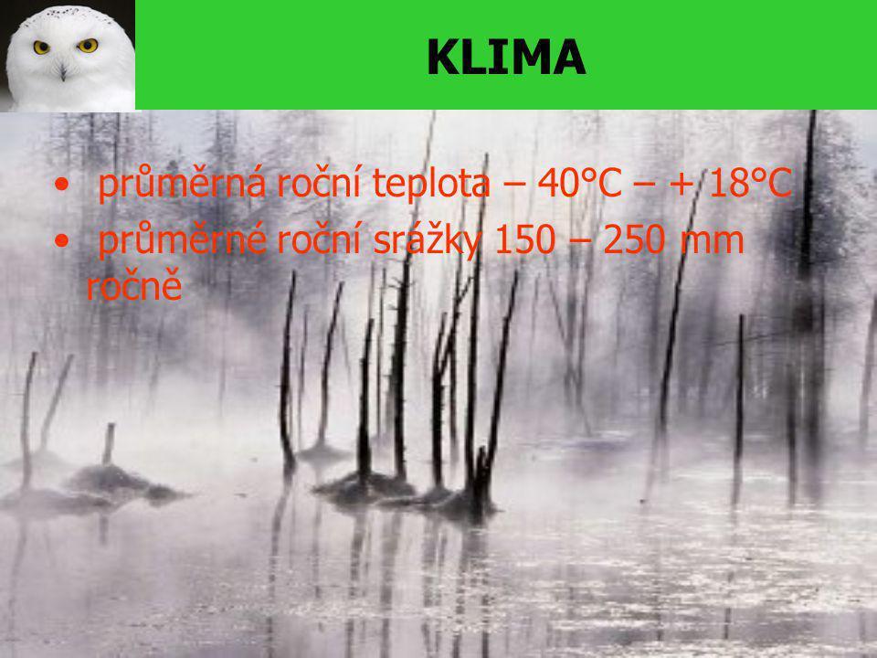 KLIMA průměrná roční teplota – 40°C – + 18°C