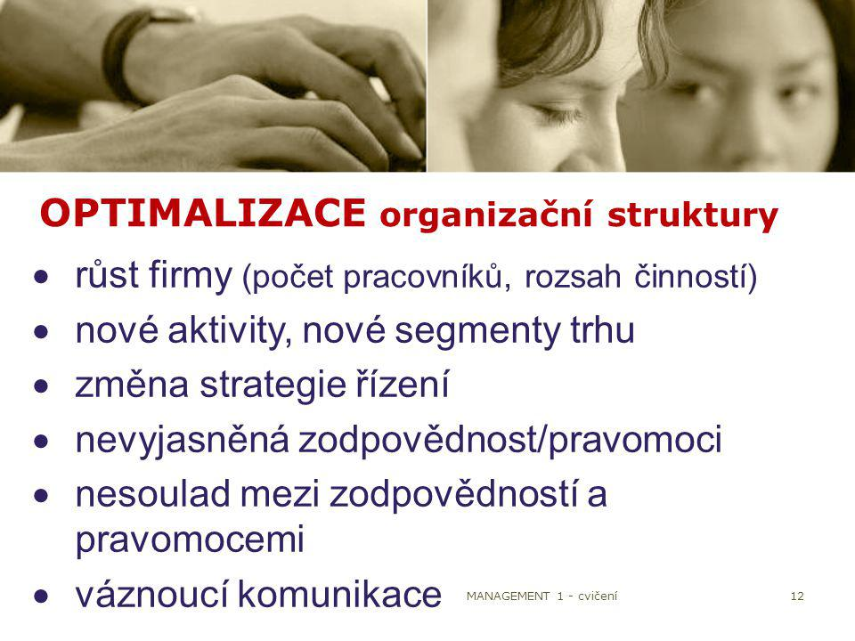 OPTIMALIZACE organizační struktury
