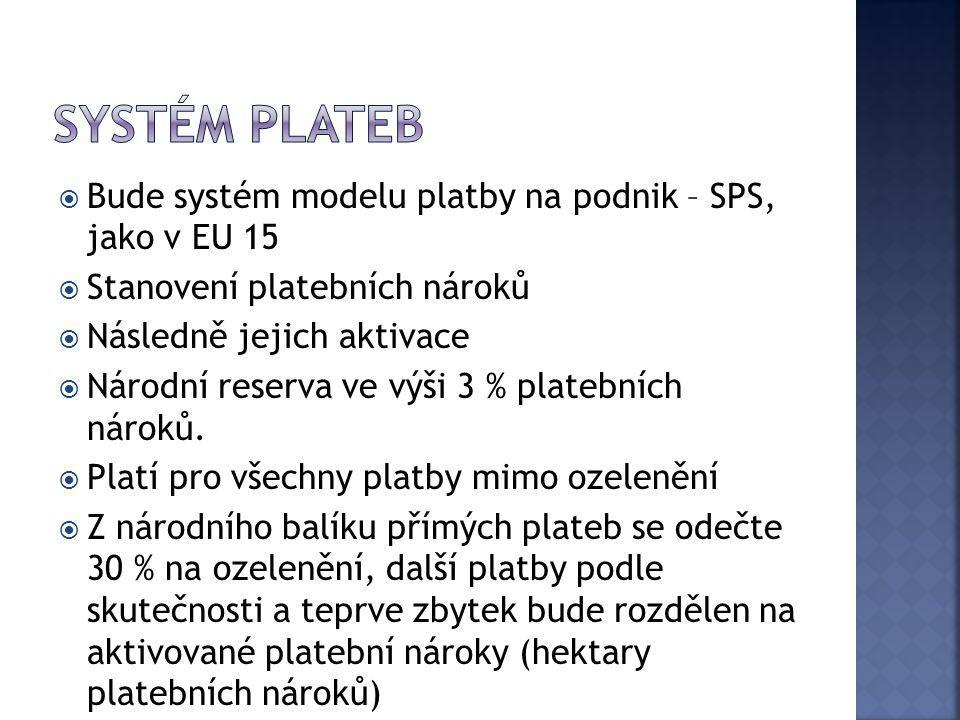 Systém plateb Bude systém modelu platby na podnik – SPS, jako v EU 15