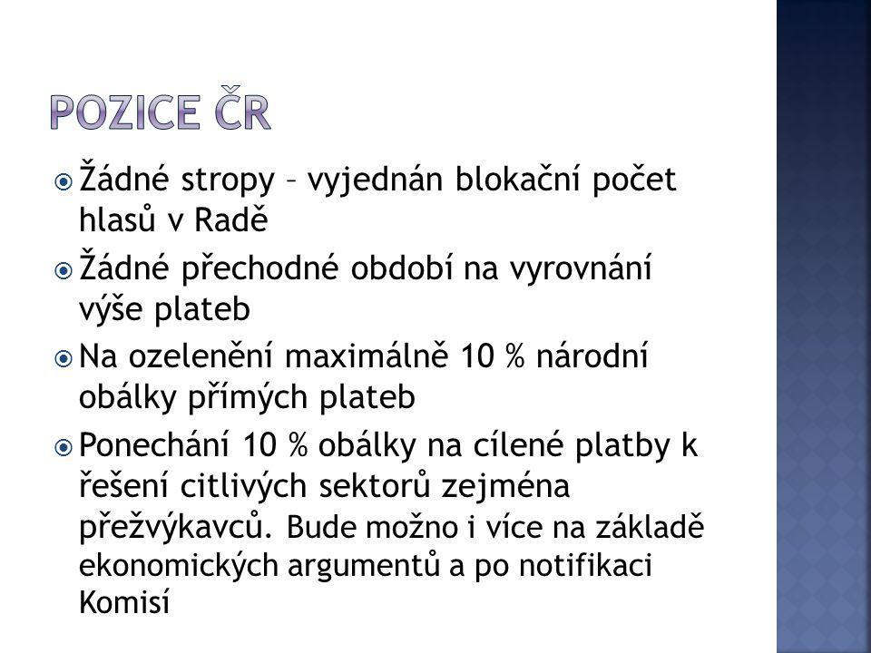Pozice ČR Žádné stropy – vyjednán blokační počet hlasů v Radě
