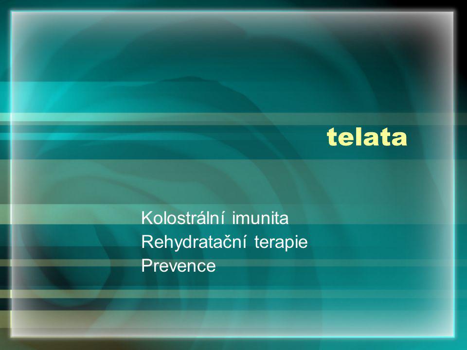 Kolostrální imunita Rehydratační terapie Prevence