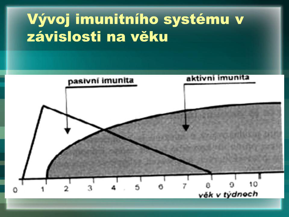 Vývoj imunitního systému v závislosti na věku