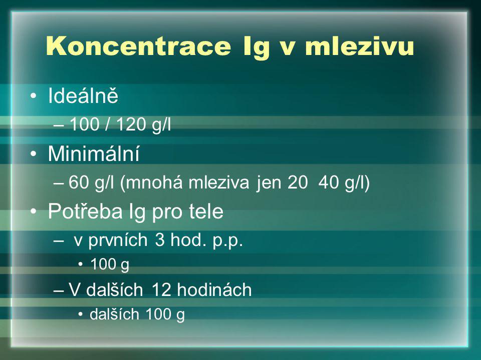 Koncentrace Ig v mlezivu
