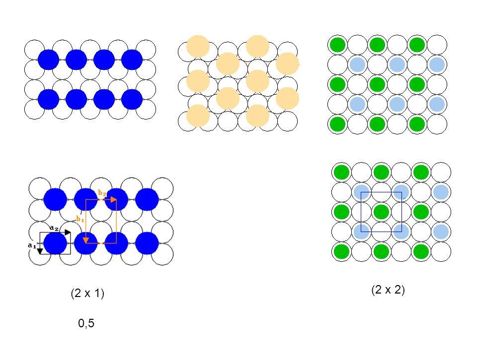 (2 x 2) (2 x 1) 0,5